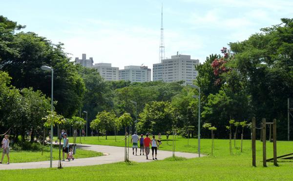 parque villa-lobos passeio na grama