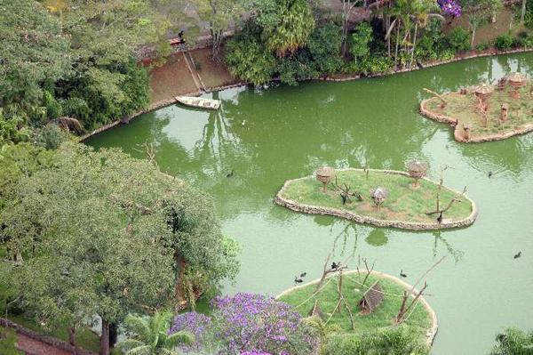 lago zoológico de são paulo